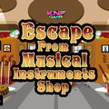 Knf Escape From Musical Instruments Shopのイメージ