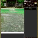 ターン制の背景縦表示タイプのMMORPGです。