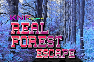 Real Forest Escapeのゲーム画面「Real Forest Escape」