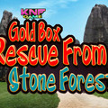 Knf Gold Box Rescue From Stone Forestのイメージ