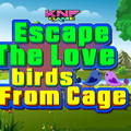 Knf Escape The Love birds From Cageのイメージ