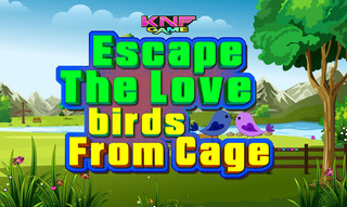 Knf Escape The Love birds From Cageのゲーム画面「Knf Escape The Love birds From Cage」