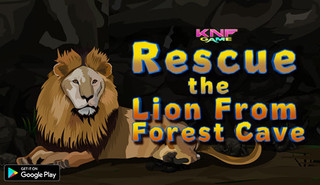 Knf Rescue the Lion From Forest Caveのゲーム画面「Knf Rescue the Lion From Forest Cave 」