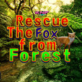 Rescue The Fox from Forestのイメージ