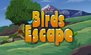 Knf birds Escapeのゲーム画面「Knf birds Escape」