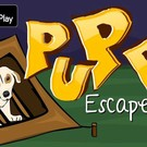 NSR Puppy Escape