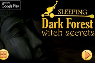 Dark Forest Escapeのゲーム画面「Dark Forest Escape」