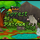 Knf Forest Hog Rescue