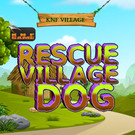 KNF Village Rescue Dog